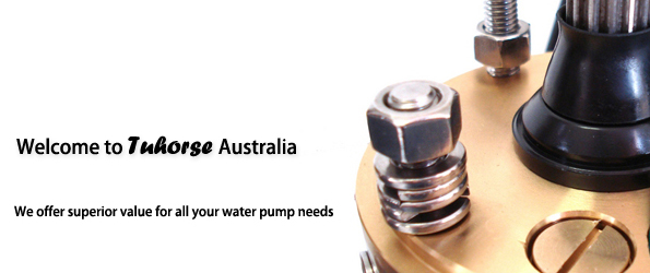 Bore Pumps Submersible Bore Pump And Water Solar Pump